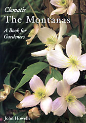Clematis THE MONTANAS
